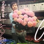 元お花屋さんの「今月のお花」コーナー#6月